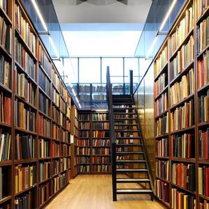 Библиотеки Каменского
