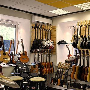 Музыкальные магазины Каменского